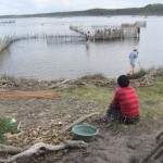 a group of students check out the fish traps