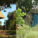 kosibay_accommodation_wheretostay_southafrica_chalet