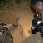 Photographer and Turtle at the border of Mozambique
